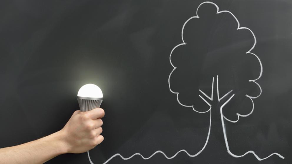 Cómo ahorrar en la electricidad