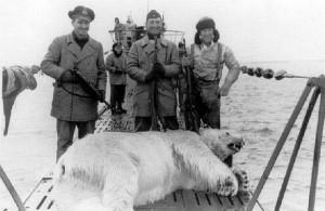 ¿Quien le iba a decir a este pobre oso que lo cazaría un submarino? Pues eso nos pasa a nosotros...