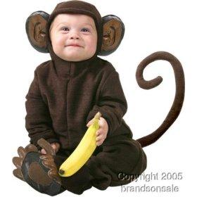 Leña al mono que es de goma, hasta que hable inglés